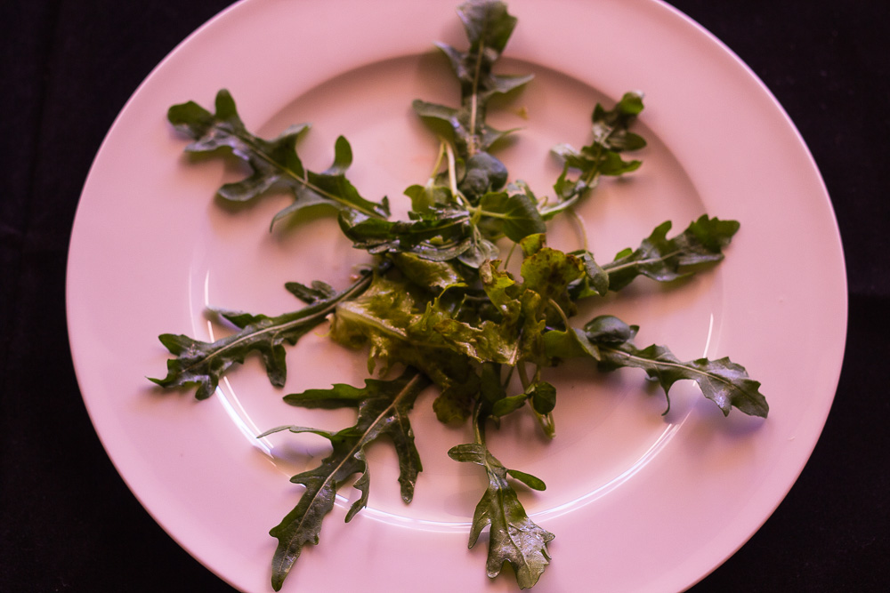 Salmon Salad Final 2