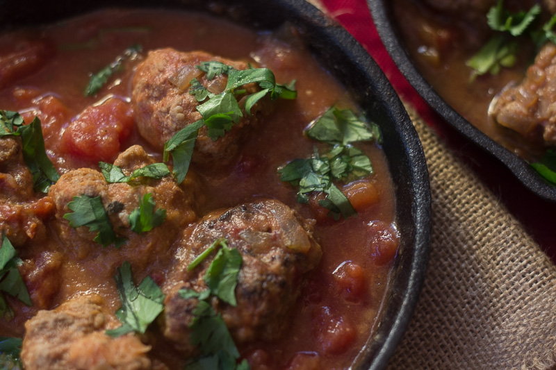 Mexican Meatballs (2 of 2) (1 of 1)